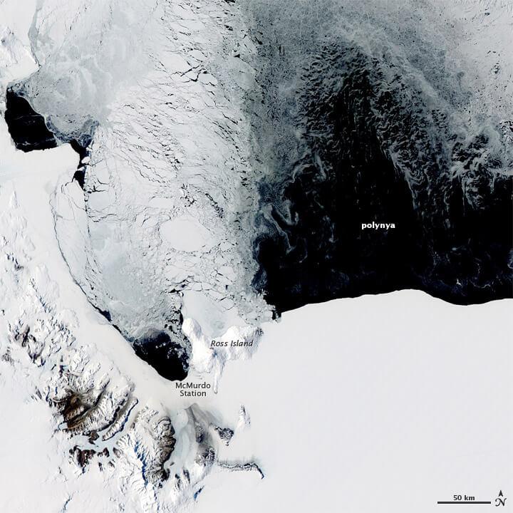 polynia-antarktyda