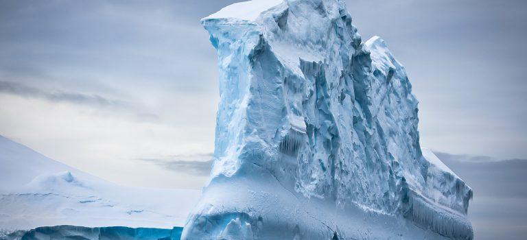 Decyzja podjęta! Płynę na Antarktydę.