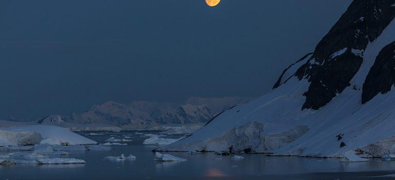 Zapraszam do relacji z Antarktydy